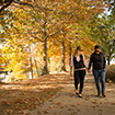 Couple walking in the Fall